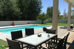 Backyard Pool Contractor